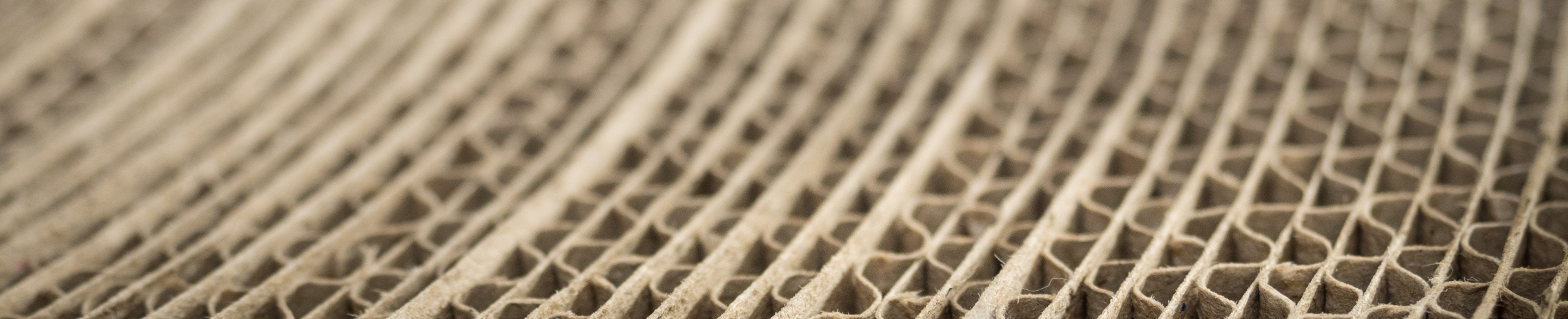 Paper Industry adds value to the Raw Materials EIP
