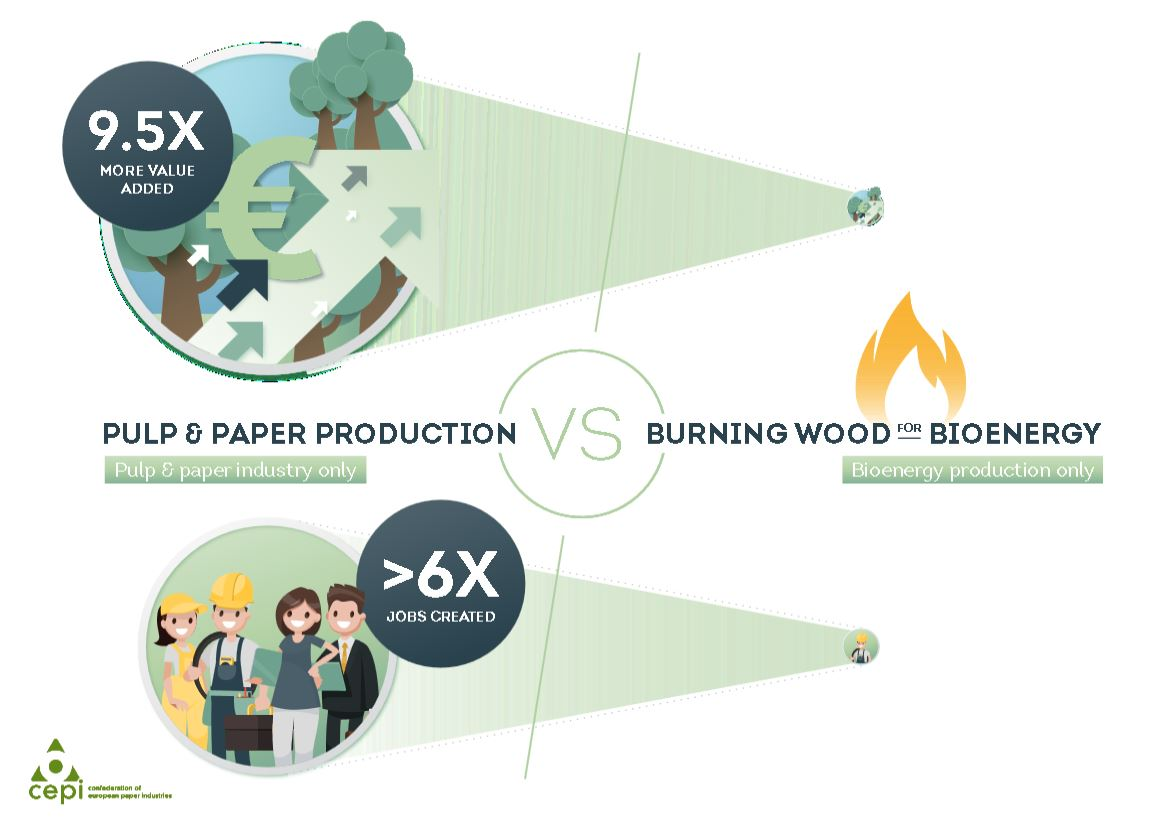 REDII infographic: pulp & paper production vs burning wood for bioenergy