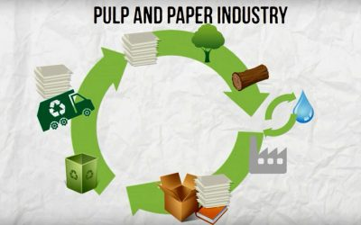Joint letter on alignment of Renewable Energy Directive with the Circular Economy Policies
