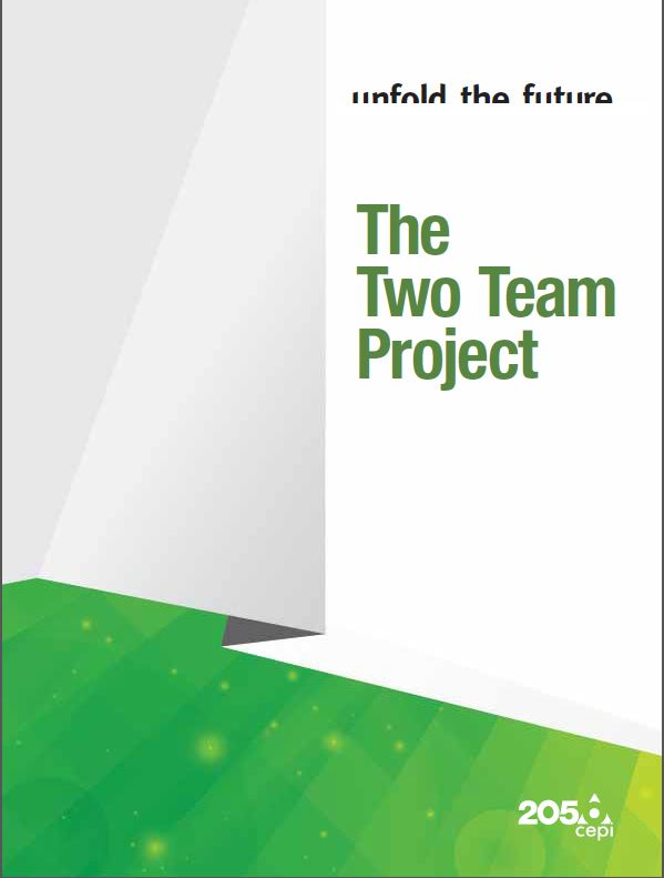 Two Team Project Report
