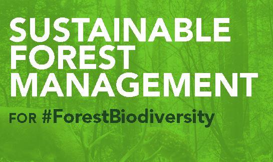 ForestBiodiversity