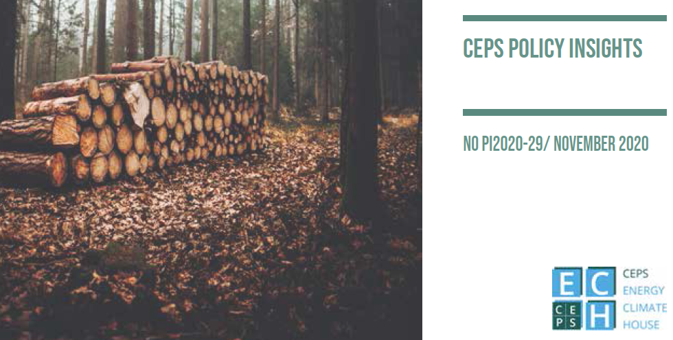Policy paper: What role for forest-based industries in a climate-neutral future?
