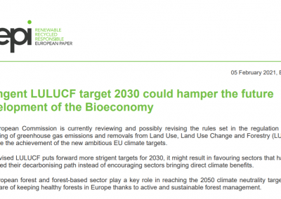 Stringent LULUCF target 2030 could hamper the future development of the Bioeconomy