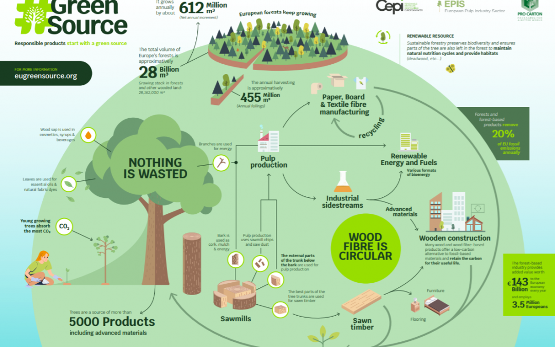 Infographic: Responsible products start with a green source