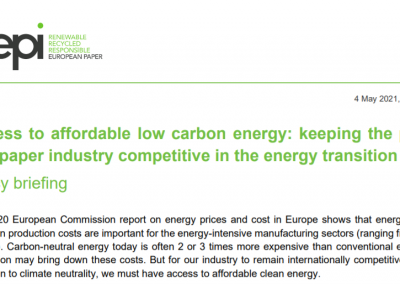 Access to affordable low carbon energy: keeping the pulp and paper industry competitive in the energy transition