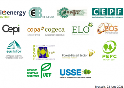 Joint statement on the EU Forest Strategy: time to really consider the opinion of EU forest and forest-based sector