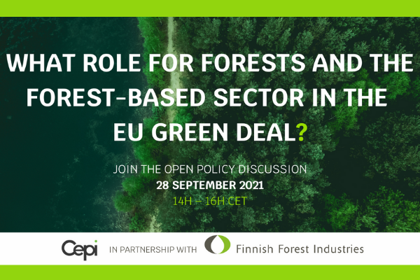 MEP Nils Torvalds: 'I'm against the power creep in the EU's forest strategy'
